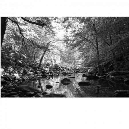Andrew Christie - Buttermilk Falls